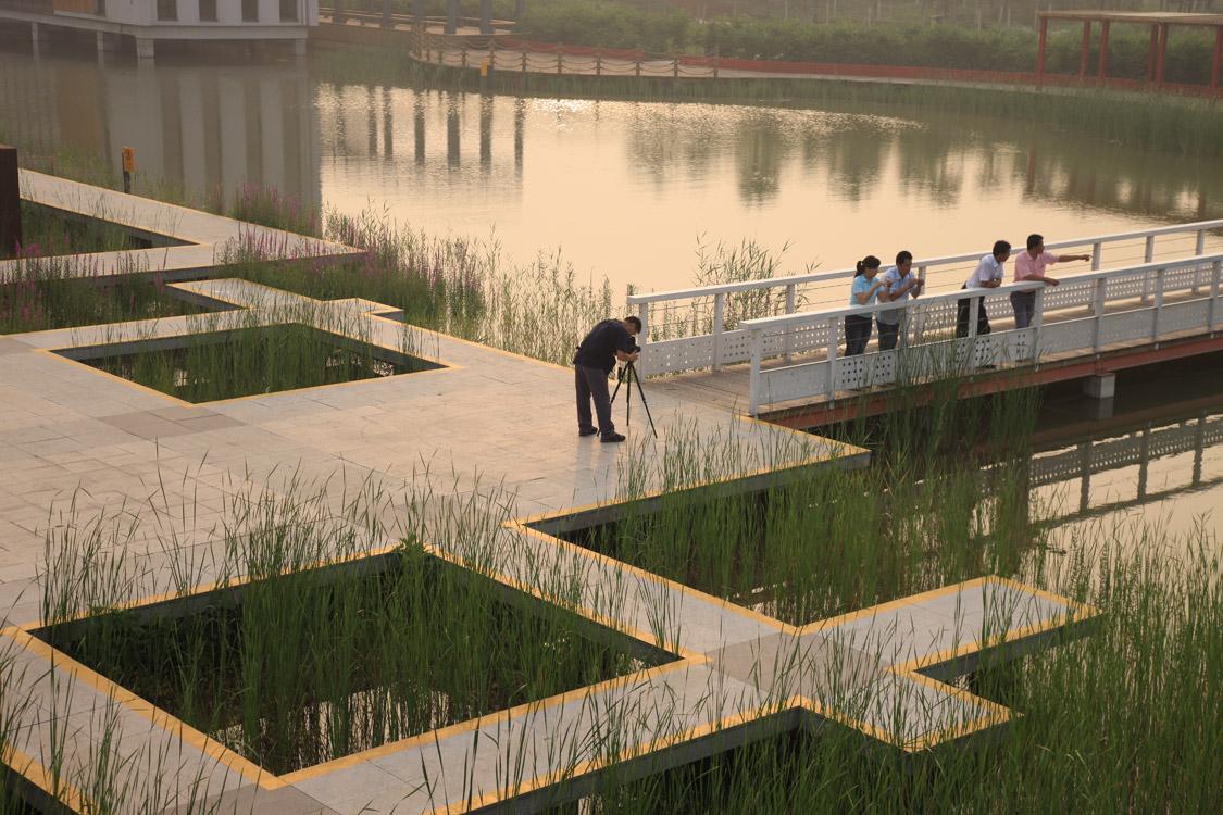 10e-turenscape-landscape-architecture-bridge-park ...