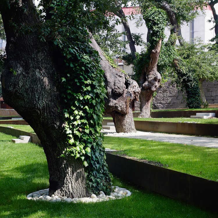 Redevelopment Of The Park-Garden And Carballeira By