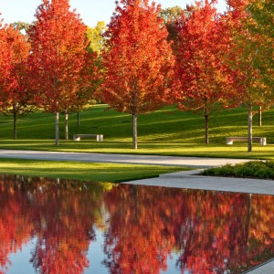 During the master planning process, which began in the late 1990s, the Trustees of Lakewood Cemetery asked Halvorson Design Partnership to take on the challenge of integrating a large new mausoleum in the historic garden landscape.