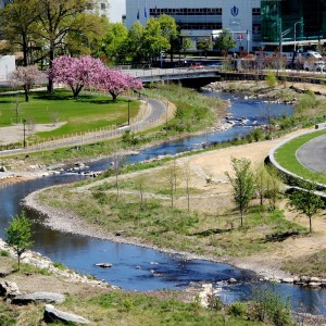 """OLIN led a team of ecologists and civil engineers, collaborating with experts to create a comprehensive and ambitious framework for a park and greenway. The end result: a dynamic park that is viable, active and alluring, a continuous programmed edge along the banks of Mill River, and a """"green zipper"""" that brings together neighboring communities with downtown Stamford."""