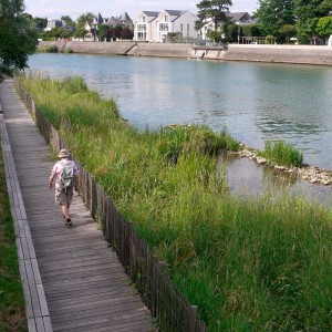 The city of Perreux-sur-Marne has rethought its entire relation to its river, considering it as a major environmental, social, urban and political issue. The project aims at bringing back both the people and other species of plants and animals to the banks of the river Marne, by softening the water and urban edges. Concrete protections are turned into vegetal engeneering, and overflood is accepted, widening the spectrum of environements.