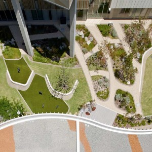 The design leads the way in the integration of landscape-based therapy tools. The rehabilitation courtyards incorporate pathways of various distances and obstacles to navigate; providing everyday challenges, such as navigating kerbs, slopes and stairs that allow patients and therapists to set goals and measure recovery.