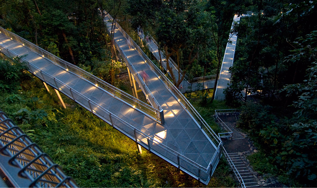 Alexandra Arch & Forest Walk by LOOK Architects « Landscape Architecture  Platform | Landezine