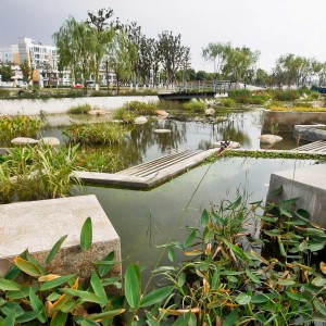 As a gateway for the city's westward expansion, Lotus Lake Park had to define and demonstrate the character of the future public realm in the west.