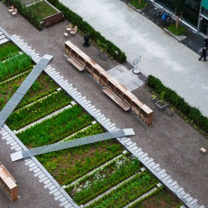 When commissioned as designers for the new Physic Garden at Novartis Campus, Basel, Switzerland, the idea of trying to create a modern version of the medieval monastery garden intrigued us. It would add a depth of time to the place, as well as symbolic content: the monastery garden represents the very origin of pharmacy as a science and thus the activity of Novartis as a company.