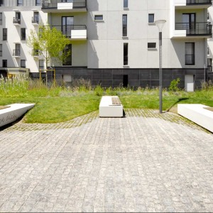 To mark the 54th birthday of the twinning of the cities of 'Asnières-sur-Seine' and 'Berlin- Spandau', the city of Asnières is creating a mail leading up to a future kindergarten – a mail is a large pedestrian path lined with trees and plantations in an urban environment. The mail 'Berlin- Spandau' is innovative in terms of landscape design being inspired by German principles which include maintenance, materials, and living spaces.