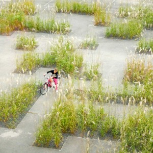 """The new museum Texture needs a new temporary square pending a total remake of the environment. Studio Basta and Wagon-landscaping introduced a garden based on the QR-code of the Texture-museum. The result is a labyrinthine sea of grasses that remembers the flax-fields along the """"Golden River""""  Leie."""